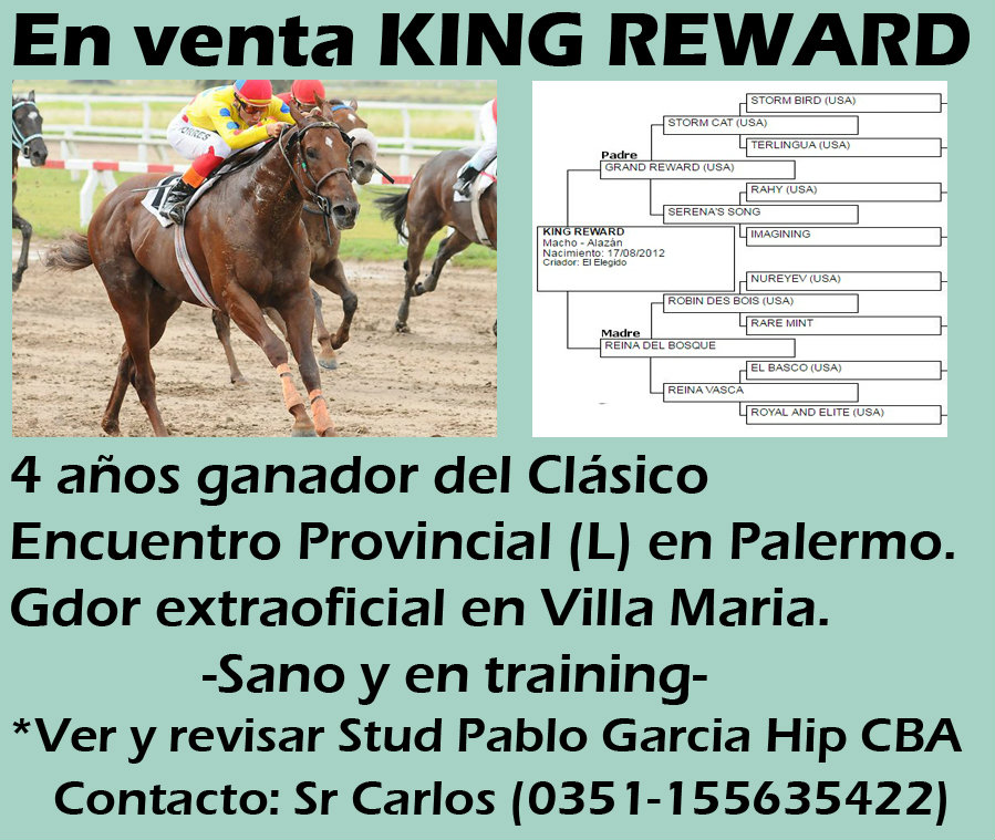 VENTA KING REWARD