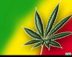 La marihuana produce perdida de memoria y otras cosas que no me acuerdo.