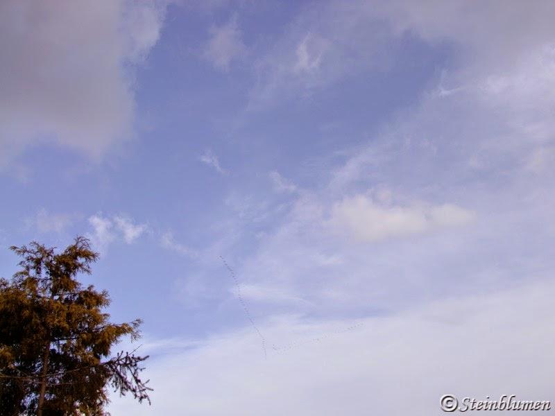 Kranichzug am Himmel