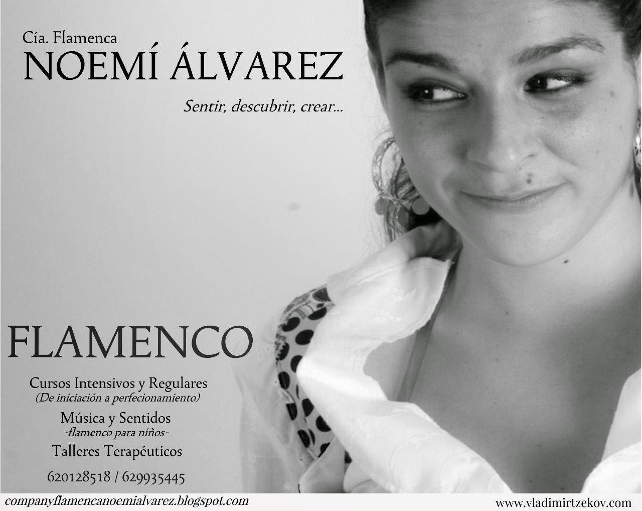 Cía. Flamenca Noemí Álvarez