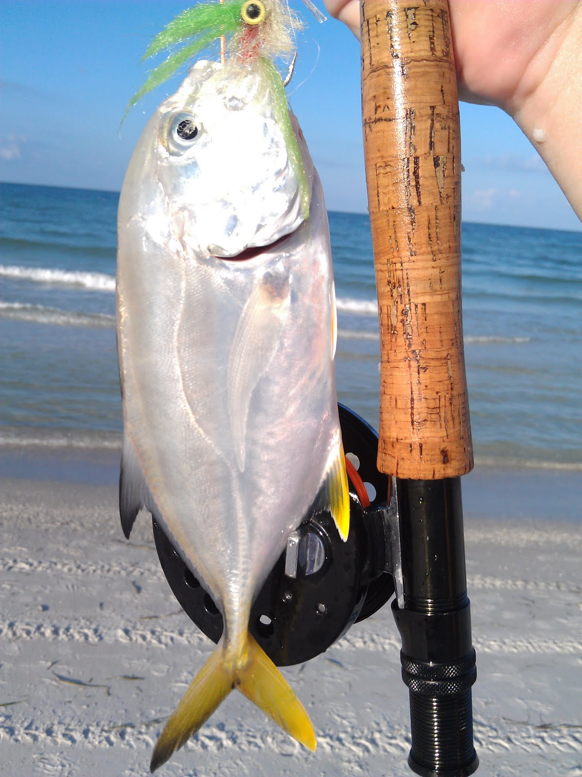 A year on the fly more florida surf fishing for Surf fly fishing