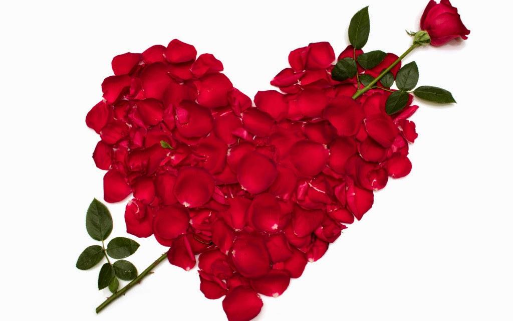 Gambar Bunga Romantis Kata Ucapan Aku Cinta Padamu HD