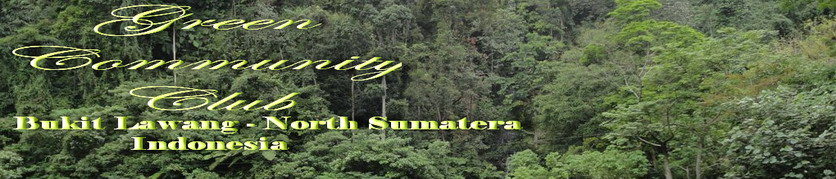 Bukit Lawang Tourust Place  l Green Community Club  l  Bukit Lawang  l  Sumatera - Indonesia