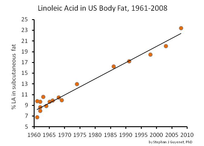 Whole Health Source My Tedx Talk The American Diet A Historical Perspective