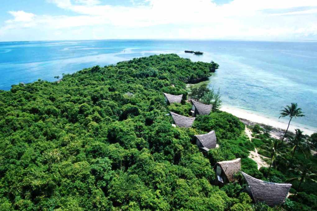 Zanzibar mangroves