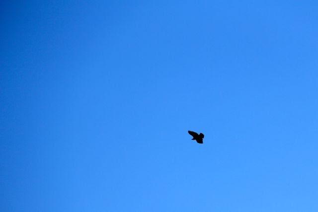 blue skies smilin' at me