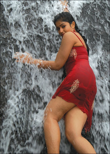 Actress Poonam Bajwa Hot Photos