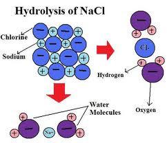 gambar hidrolisis garam