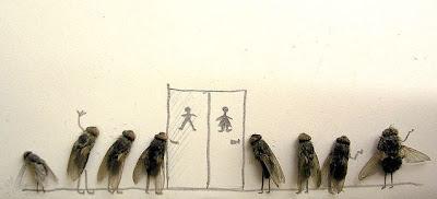 Afinal as moscas sao uteis depois de mortas Image005