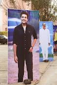 Rabhasa Posters and Wallpapers-thumbnail-15