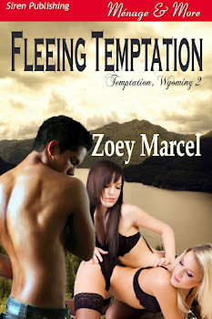 Fleeing Temptation (Temptation, Wyoming 2)