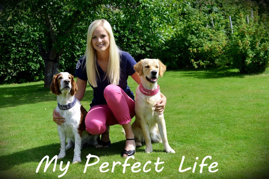 My Perfect Life ★