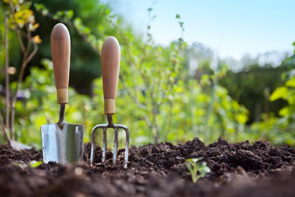 Cara Menguji Sendiri Kealkalian dan Keasidan Tanah