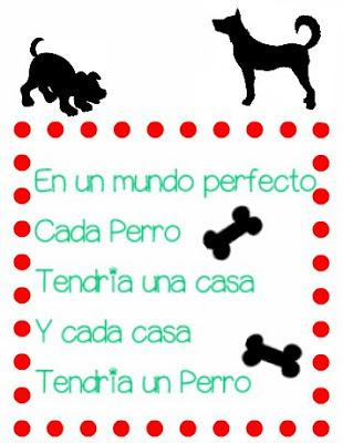 Spanish Dog Quote