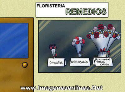 Floristeria Remedios