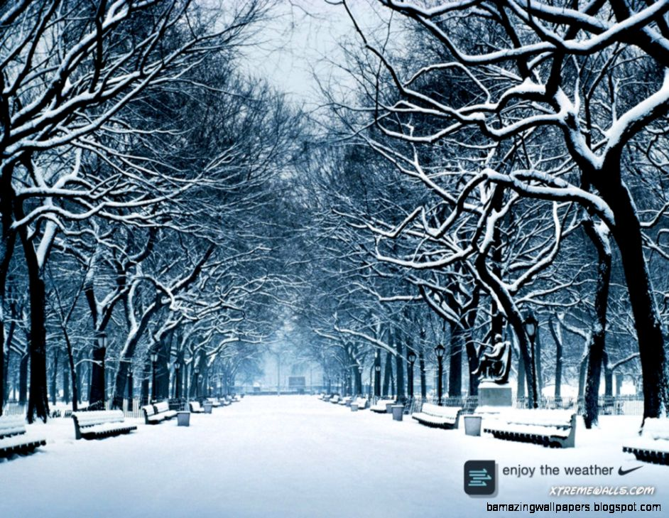 Winter Season 1024x768 wallpaper right click and choose Set as