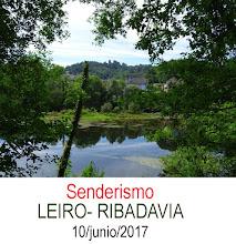 Senderismo: Leiro-Ribadavia