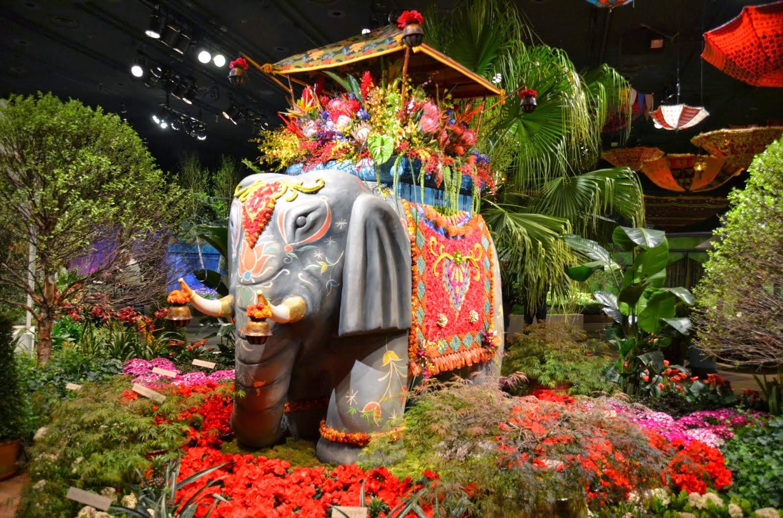 Ludlow Live Wire Macy s Flower Show