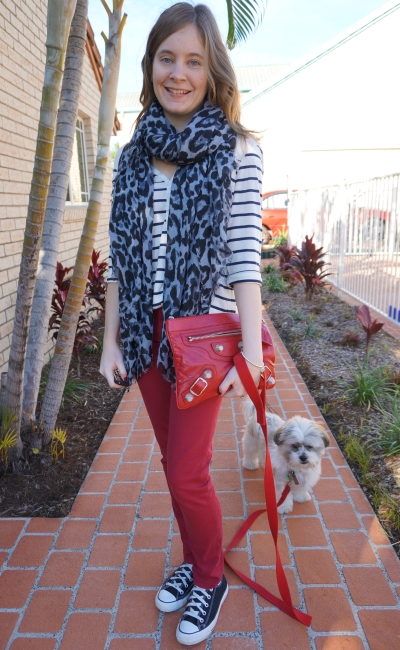Away From Blue stripes leopard scarf red jeans converse Cooper the Shih Tzu