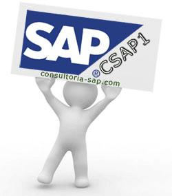 Manual SAP CSAP1