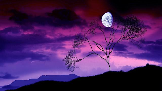 hermoso paisaje de una noche con luna llena