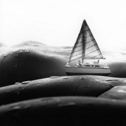 Ландшафты тела  Allan Teger