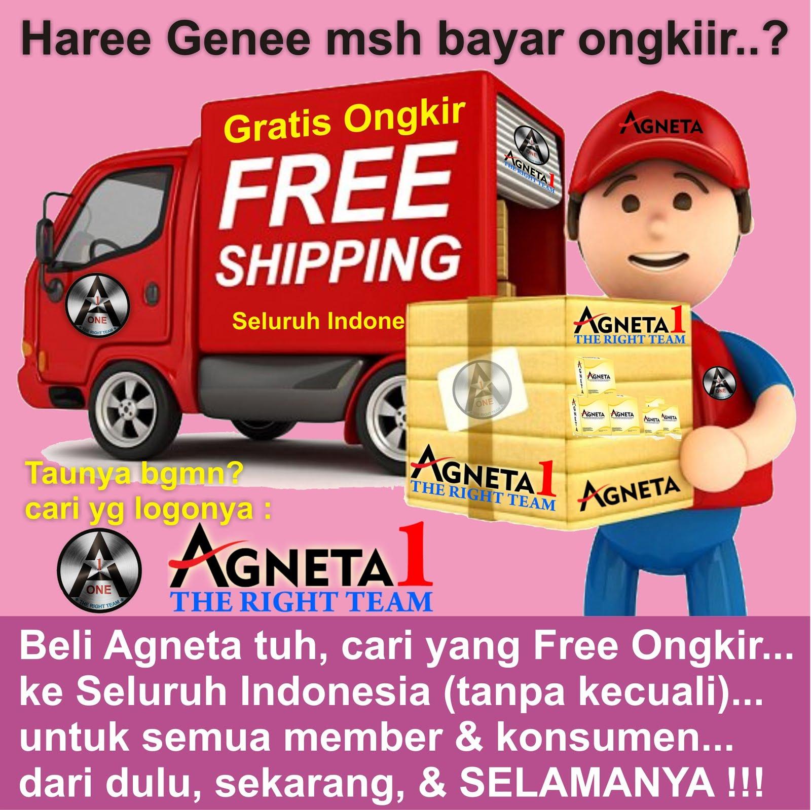 Beli Agneta Gratis Ongkir Seluruh Indonesia