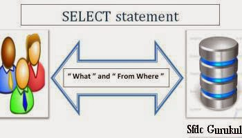SOQL_Select_Query