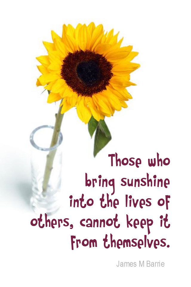 visual quote - image quotation for Happiness - Those who bring sunshine into the lives of others, cannot keep it from themselves. - James M Barrie