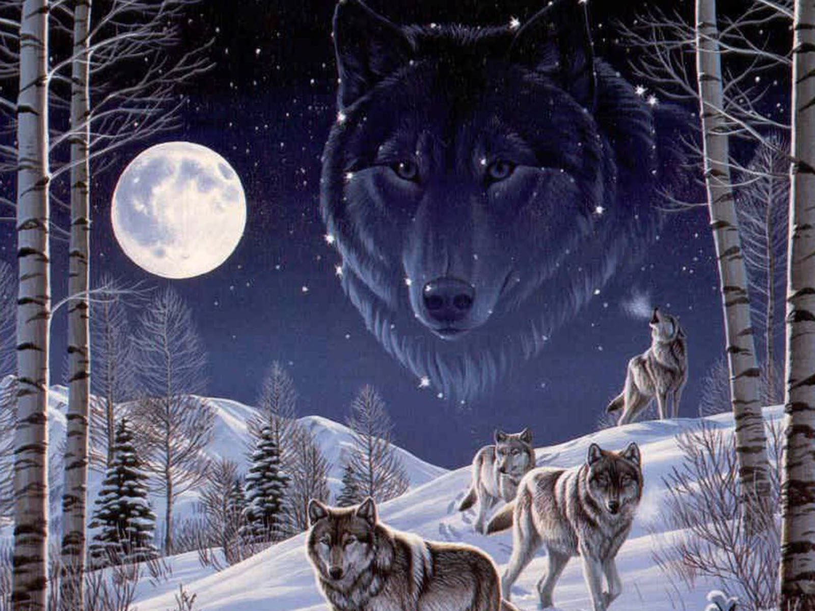 wallpapers vision of the wolf wallpapers