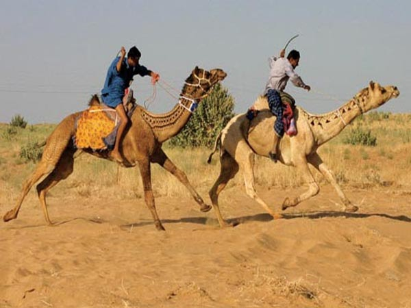 Welcome To Pakistan: Thar Desert Pakistan