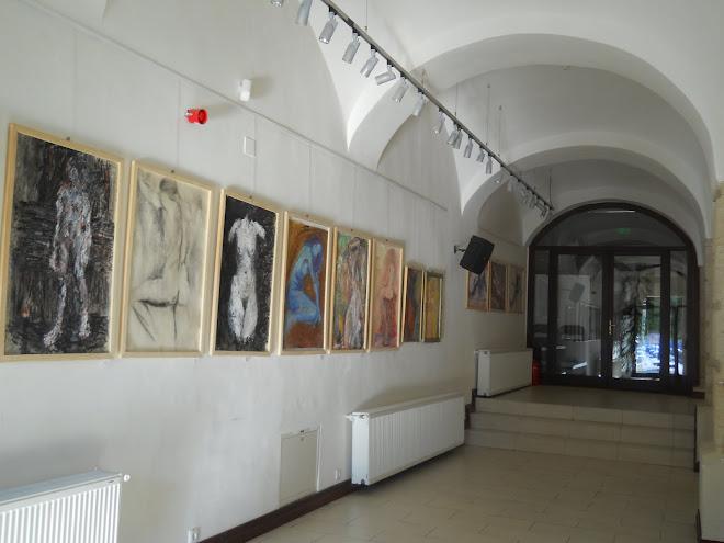 expozitie 14.10.2010 millenium baia mare