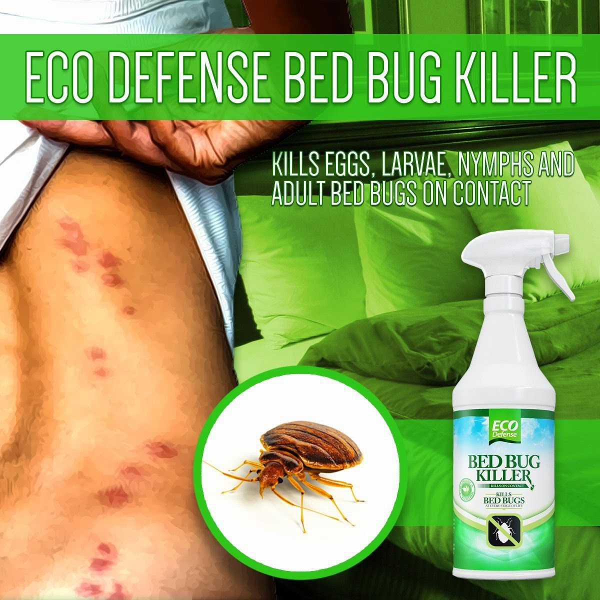 bed bbkit lgvp perimeter kit p insect large spray the control harris home bug depot