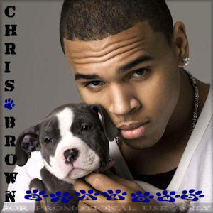 Chris Brown – Diamond (PROMO) (2011)