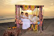 Srikanth's Natukodi Movie photos gallery-thumbnail-1