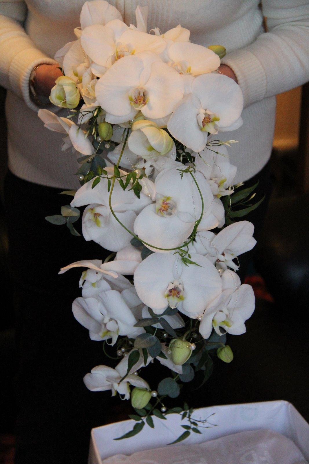 Cascade Orchid Bridal Bouquet : Kathleens florist blackpool white phalaenopsis orchid