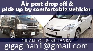 Air Port Transfers