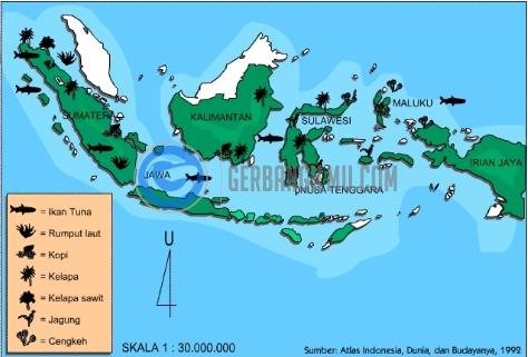 Kegunaan Peta Umum dan Peta Khusus