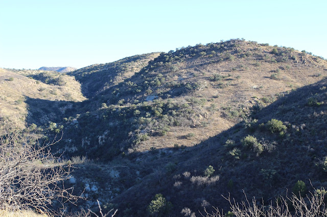 Hunting%2Bin%2BSonora%2BMexico%2Bfor%2Bcoues%2Bdeer%2Bwith%2BColburn%2Band%2BScott%2BOutfitters%2B3.JPG