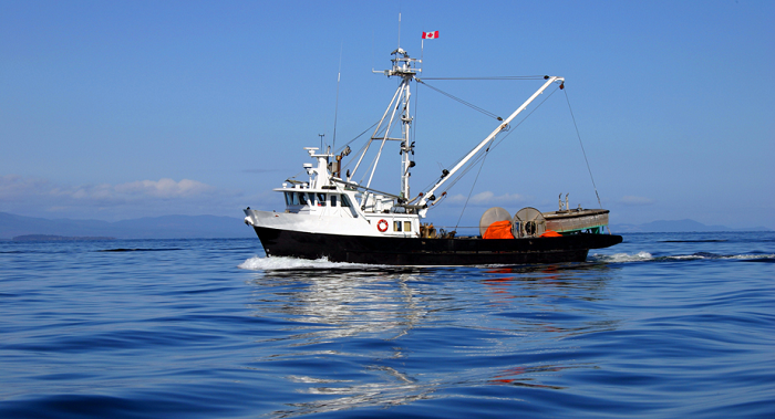 http://www.huffingtonpost.ca/2015/01/05/justin-trudeau-paul-davis-fisheries_n_6420234.html?ncid=tweetlnkushpmg00000067