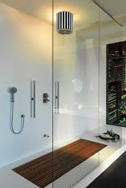 Executive Bathroom Shower And Lightings