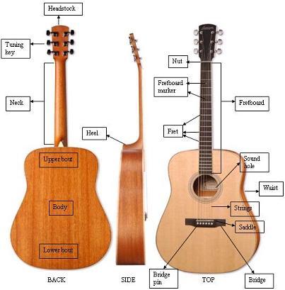 Susunan Body Gitar