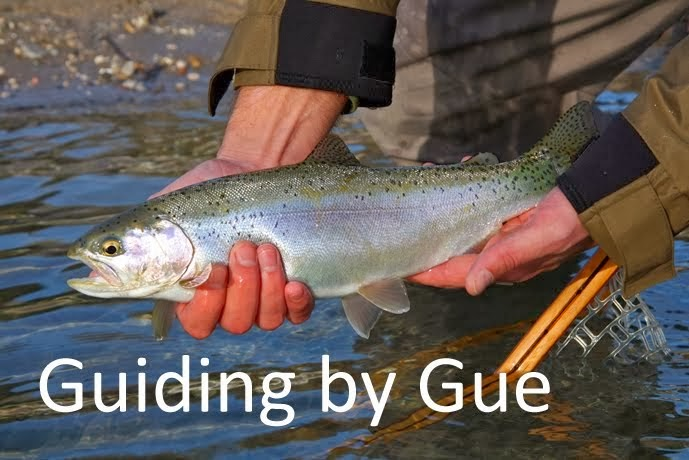http://www.gue-flyfishing.com/p/guiding-by-gue.html