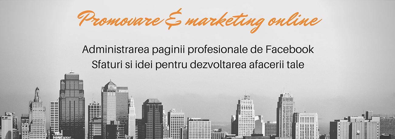 Promovare si Marketing online Galati