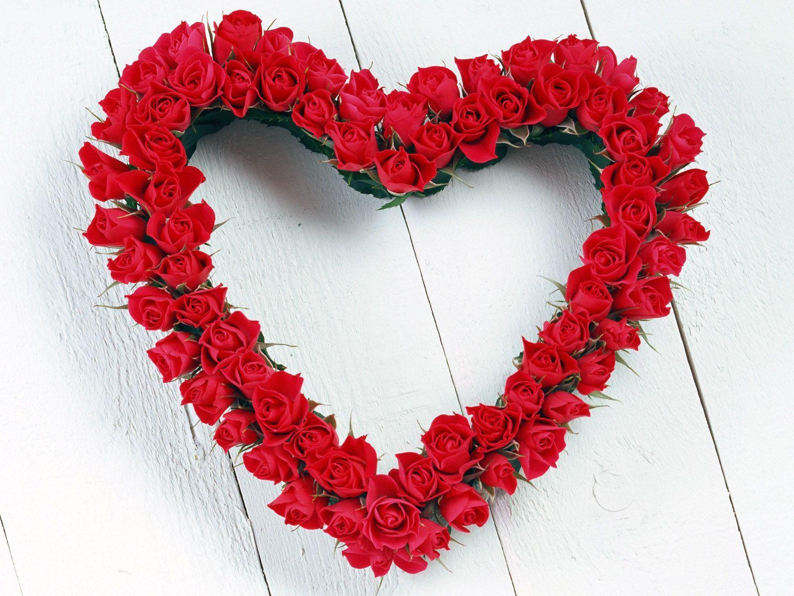 I Am Roses Challenge Blog: February IARCC \