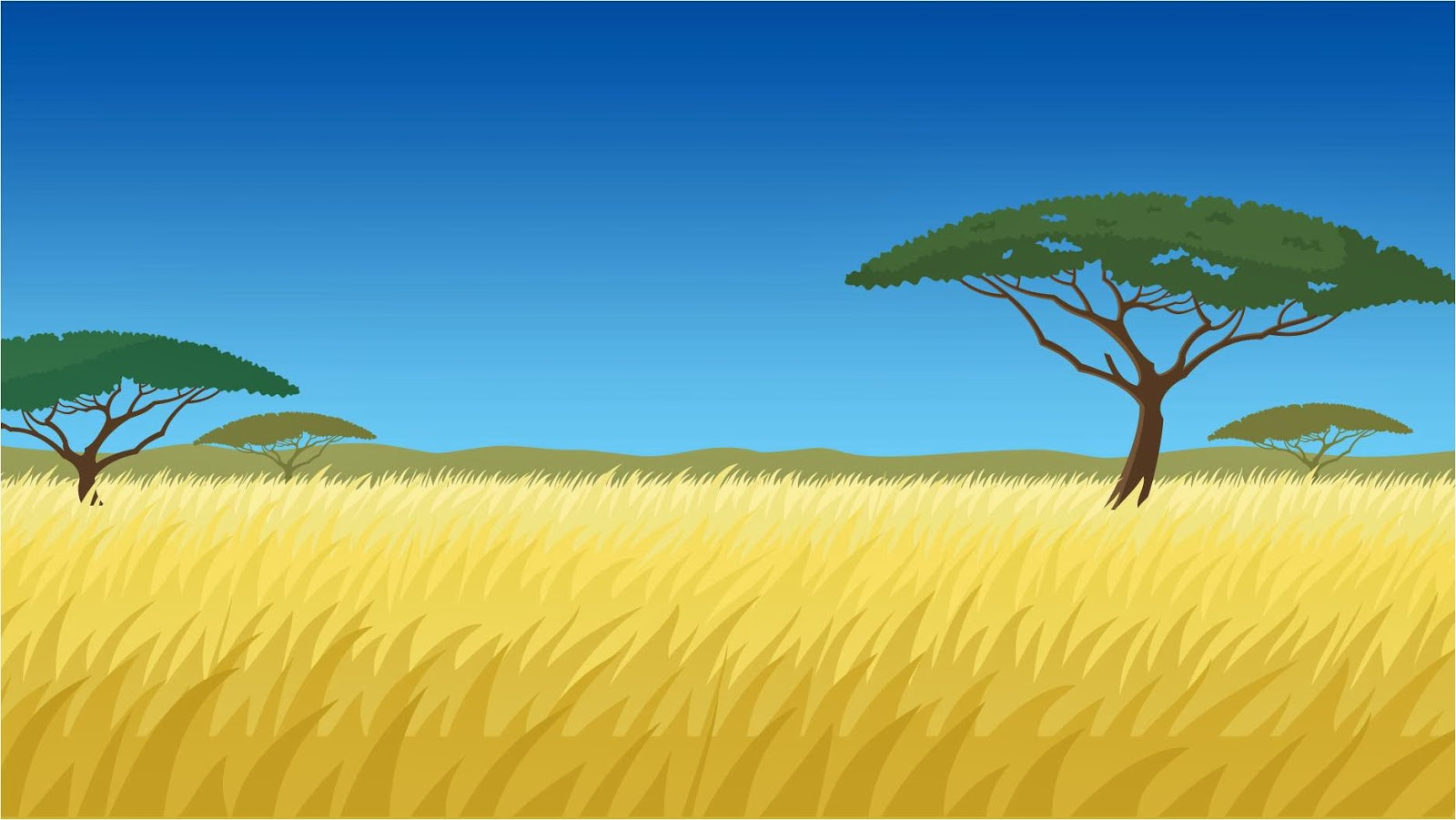 safari background cartoon www imgkid com the image kid Mailbox Outline Mailbox Outline