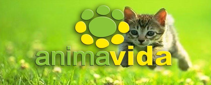 Ánimavida, asociación protectora de animales y medio ambiente