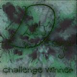 lindsays Blog challenge