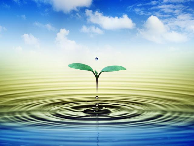 su damlaları su damlacığı masaüstü arka plan resmi