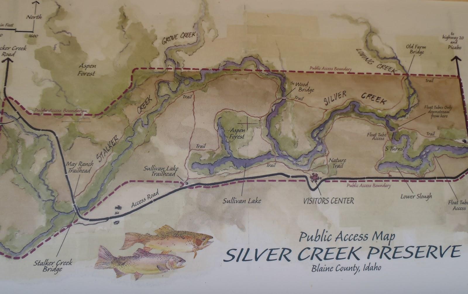 Phoenix fly casters fly fishing arizona rubbing elbows for Silver creek idaho fishing